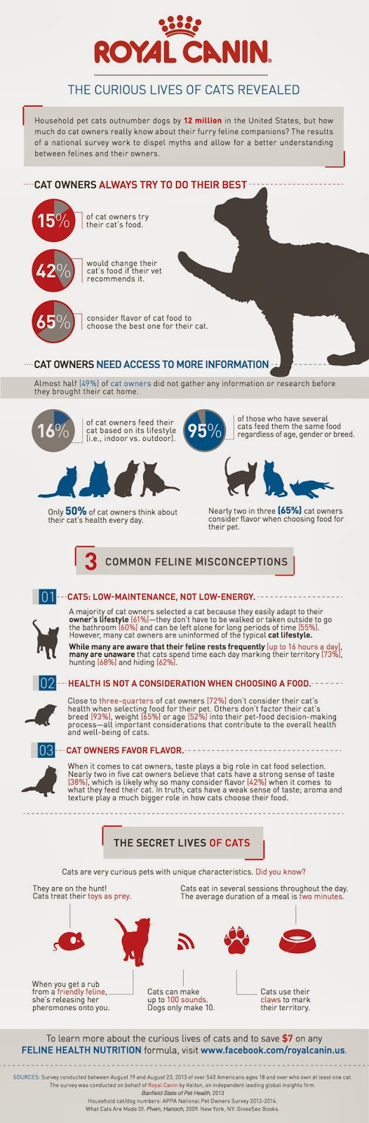 curious-cat-infographic-final-rev-2_259879_870_final[1](1)