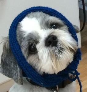 Chance-knit