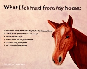 what-i-learned-from-my-horse-web